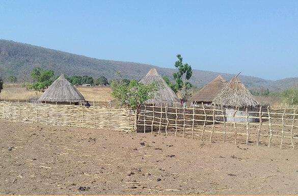 Une avancée significative dans le démarrage des travaux du Barrage de Sambangalou